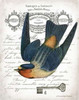 French Swallow I Poster Print by Gwendolyn Babbitt - Item # VARPDXBAB273