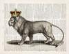 Magestic Lion Poster Print by Christopher James - Item # VARPDX502JAM1227