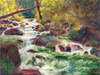 Mountain Stream Poster Print by Carol Bailey - Item # VARPDXBAI108