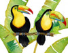 Tropcial Toucan Pair Poster Print by Mary Escobedo - Item # VARPDX331ESC1905