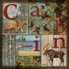 C is for Cabin Poster Print by Paul Brent - Item # VARPDXBNT1078