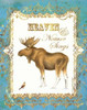 Moose in Snow Poster Print by Gwendolyn Babbitt - Item # VARPDXBAB333