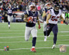 Dion Lewis Touchdown 2016 AFC Divisional Playoff Game Photo Print - Item # VARPFSAATS179