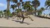 Ceratosaurus running across a tropical landscape Poster Print - Item # VARPSTKVA600156P