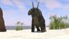 Triceratops on a beach Poster Print - Item # VARPSTKVA600194P