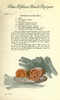 Delicious Recipes by California Peach Growers 1920 Genoese Peach Roll Poster Print - Item # VARPPHPD50792