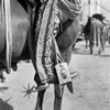 1930s Detail Of Traditional Charro Cowboy Costume Embroidered Chaps Spurs Leather Boots In Horses Stirrup Mexico Print - Item # VARPPI178702