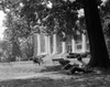 1960s Silhouetted Female College Student Sitting Under Tree Studying With Campus Building In Background Print By Vintage - Item # PPI179267LARGE