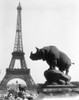 1920s Rhinoceros Statue In Foreground Eiffel Tower In Background Paris France Print By Vintage Collection - Item # VARPPI178972