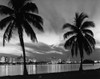 1950s Night Skyline View Across The Bay Two Palm Trees Silhouetted In Foreground Miami Florida Usa Print By Vintage - Item # VARPPI179068