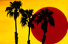 1990s 3 Silhouetted Palm Trees Against Yellow Sky With Big Red Sun Poster Print By Vintage Collection (24 X 36) - Item # PPI175982LARGE