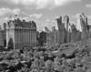 1950s Skyline Of New York City Manhattan 57Th Street Along Central Park Plaza Hotel Print By Vintage Collection - Item # VARPPI178624