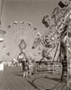 1960s Group Of Teens Looking At Amusement Rides On Pier Poster Print By Vintage Collection - Item # VARPPI177382