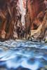 Sunlight reflecting in the virgin river narrows in zion national park;Utah, united states of america PosterPrint - Item # VARDPI2326055