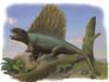 Dimetrodon limbatus Poster Print - Item # VARPSTSKR100004P