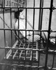 Side profile of a male prisoner sitting in a prison cell Poster Print - Item # VARSAL2555750