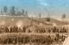Siege of Vicksburg, 1863 Poster Print by Science Source - Item # VARSCIBS9371