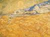 The Harvester Poster Print by Vincent van Gogh - Item # VARPDX3VG055