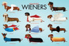 Wonderful Wieners - Group Poster Poster Print - Item # VARNMR241105
