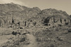 High angle view of Royal Tombs at Ancient Nabatean City of Petra, Wadi Musa, Ma'an Governorate, Jordan Poster Print by Panoramic Images - Item # VARPPI155972