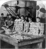 Chicago: Child Labor, 1893. /Nyoung Boys And Men Work Side By Side, Filling Skins In The Sausage Department Of Armour'S Packing House In Chicago, Illinois, C1893. Poster Print by Granger Collection - Item # VARGRC0107903