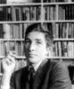 John Updike (1932-2009). /Namerican Writer. Poster Print by Granger Collection - Item # VARGRC0012079