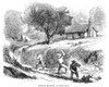 California Gold Rush, 1860. /Nground Sluicing Opertions At Gold Hill, California. Wood Engraving, American, 1860. Poster Print by Granger Collection - Item # VARGRC0048455