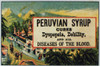 Patent Medicine. /Namerican Merchant'S Trade Card, Late 19Th Century, For Peruvian Syrup, A Patent Medicine Containing Cocaine. Poster Print by Granger Collection - Item # VARGRC0096767