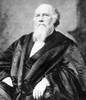 Stephen Johnson Field /N(1816-1899). American Jurist. Poster Print by Granger Collection - Item # VARGRC0076335