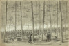 Civil War: Union Army, 1864. /Nunion Troops Fighting With Spencer Rifles During The Battle Of Darbytown Road In Virginia. Drawing By William Waud, 9 October 1864. Poster Print by Granger Collection - Item # VARGRC0407816