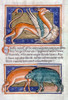 Griffin And Two Boars. /Nillumination From A 12Th Century English Latin Bestiary. Poster Print by Granger Collection - Item # VARGRC0026265