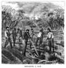 Minnesota: Logging, 1870. /Nlumberjacks Clearing A Log Jam, On A River In Minnesota. Wood Engraving, American, 1870. Poster Print by Granger Collection - Item # VARGRC0267296