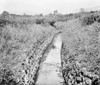 India: Malaria Prevention. /Nan Irrigation Ditch In India That Has Been Lined With Stones To Encourage The Growth Of Plants And Deter Malaria Mosquitos. Photograph, C1929. Poster Print by Granger Collection - Item # VARGRC0123673