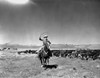 Gene Autry Riding a Horse and Spinning a Rope Photo Print - Item # VARCEL681170