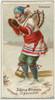 Toboggan  from Worlds Dudes series (N31) for Allen & Ginter Cigarettes Poster Print (18 x 24) - Item # MET411248