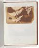 "1. Felce. 2. Alga Poster Print by William Henry Fox Talbot (British  Dorset 1800  ""1877 Lacock) (18 x 24) - Item # MET289210"