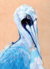 Blue and White Pelican Poster Print by Anne Seay - Item # VARPDXAE1212