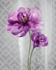 Trellis Floral2 Poster Print by Jin Jing - Item # VARPDX937JIN1146