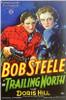 Trailing North Movie Poster Print (27 x 40) - Item # MOVCF3344