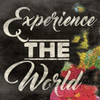 Experience The World Poster Print by  Jace Grey - Item # VARPDXJGSQ690A
