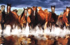 Horses Poster Print - Item # VARTIARP1278