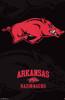 University of Arkansas - Logo 13 Poster Print - Item # VARTIARP6074