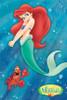 Ariel Poster Print - Item # VARTIARP5009