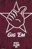 Texas A&M University - Logo 13 Poster Print - Item # VARTIARP13044