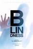 Blindness Movie Poster (11 x 17) - Item # MOV409650