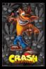 Crash Bandicoot - Crash Poster Print - Item # VARTIARP16256