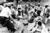 Police Arrest Civil Rights Demonstrators In Jackson History - Item # VAREVCHBDCIRICS042