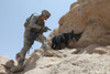 Us Soldier And Blek A Working Dog Clear Caves And Search For Weapons In The Zirat Mountain Area Afghanistan. July 7 2010. History - Item # VAREVCHISL028EC279
