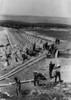German Construction Battalion History - Item # VAREVCHISL036EC115
