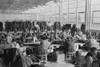 Cooperative Garment Factory At Jersey Homesteads History - Item # VAREVCHISL033EC212